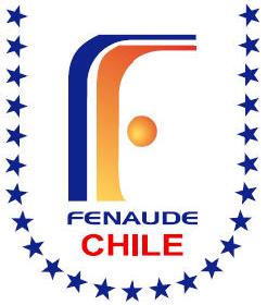 1er Torneo Natación Fenaude